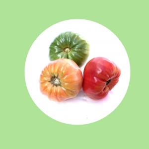 ox heart tomatoes