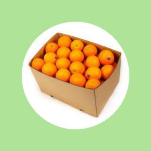 Mandarine Top Fruit Market