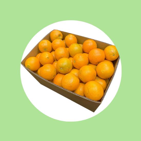 , Specials, Top Fruit Market