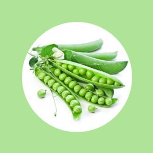Green Pea Top Fruit Market